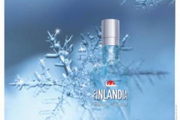 Zimowa kampania Finlandii