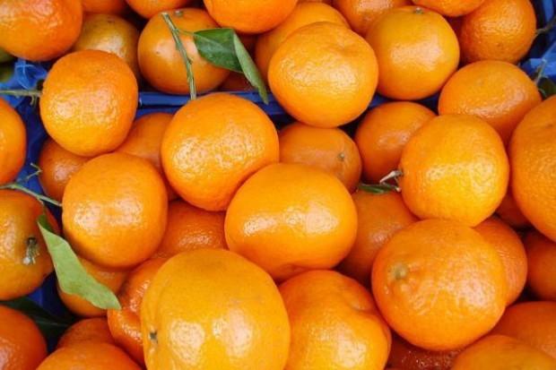 Tańsze mandarynki i pomarańcze, grejpruty i cytryny podrożały