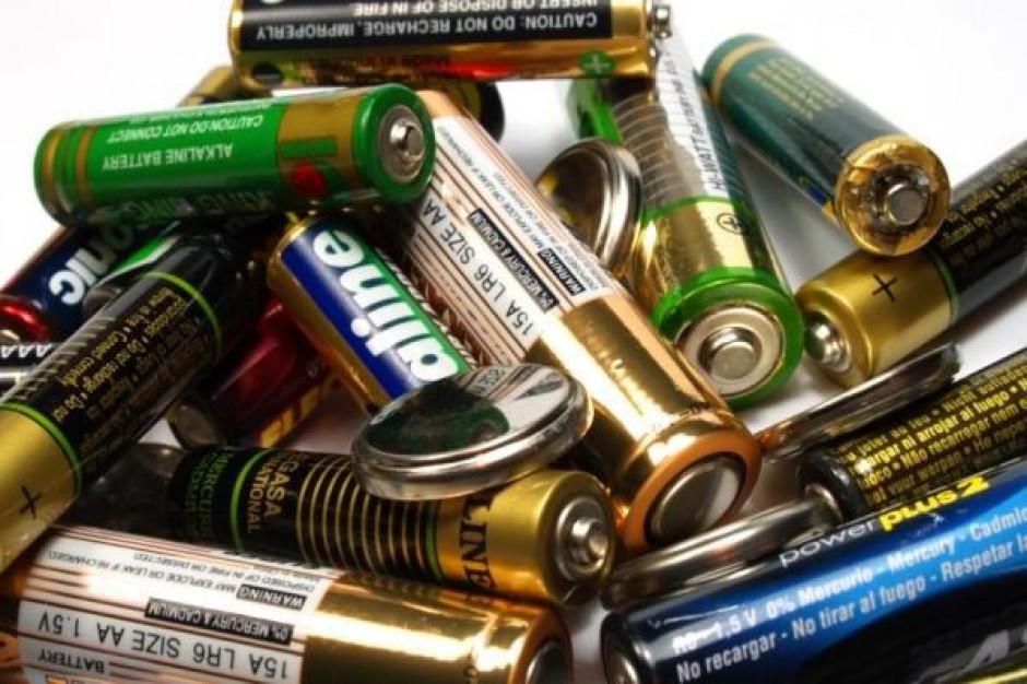 Klienci poszukują głównie baterii paluszków