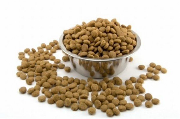 Sucha karma dla kotów najszybciej rosnącym segmentem rynku