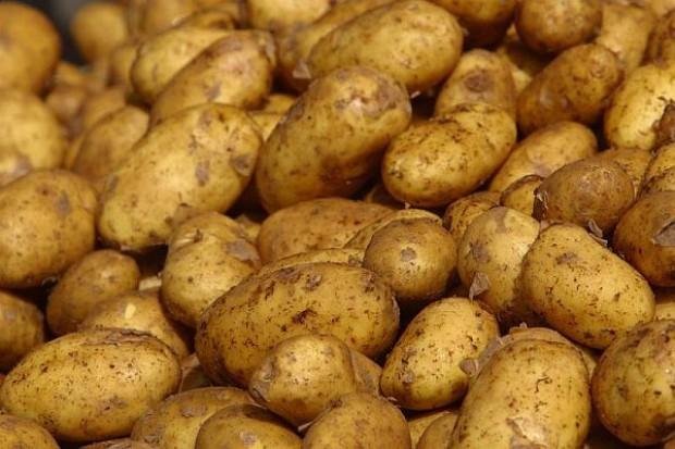Ziemniaki droższe o 40 proc.