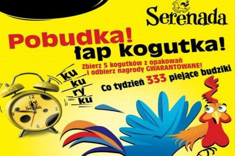 Promocja serów Serenada