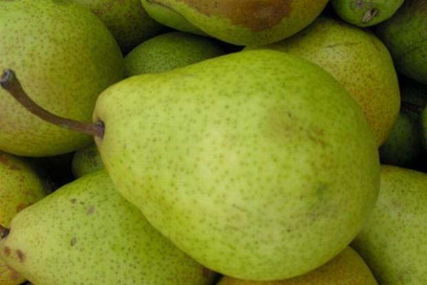 Wyższe ceny hurtowe jabłek i gruszek