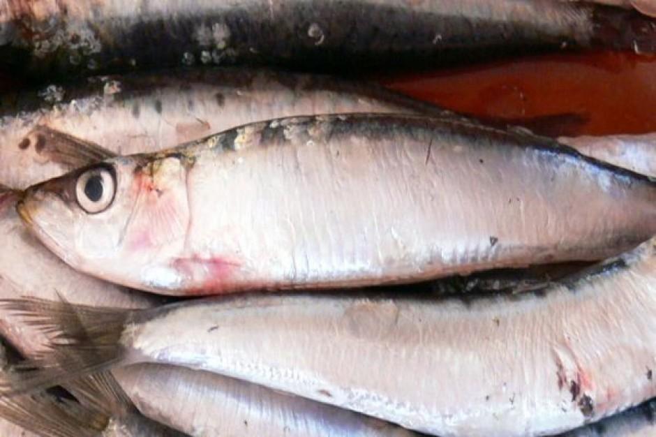 Kielce: Inspektorzy PIH skontrolowali sklepy sprzedające ryby