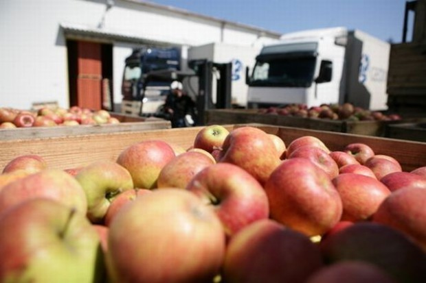 Hurtowe ceny owoców i warzyw dużo wyższe niż przed rokiem