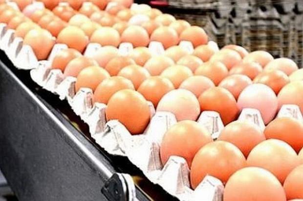 Koszyk dlahandlu: Przedświąteczne ceny w hipermarketach trzymają zeszłoroczny poziom