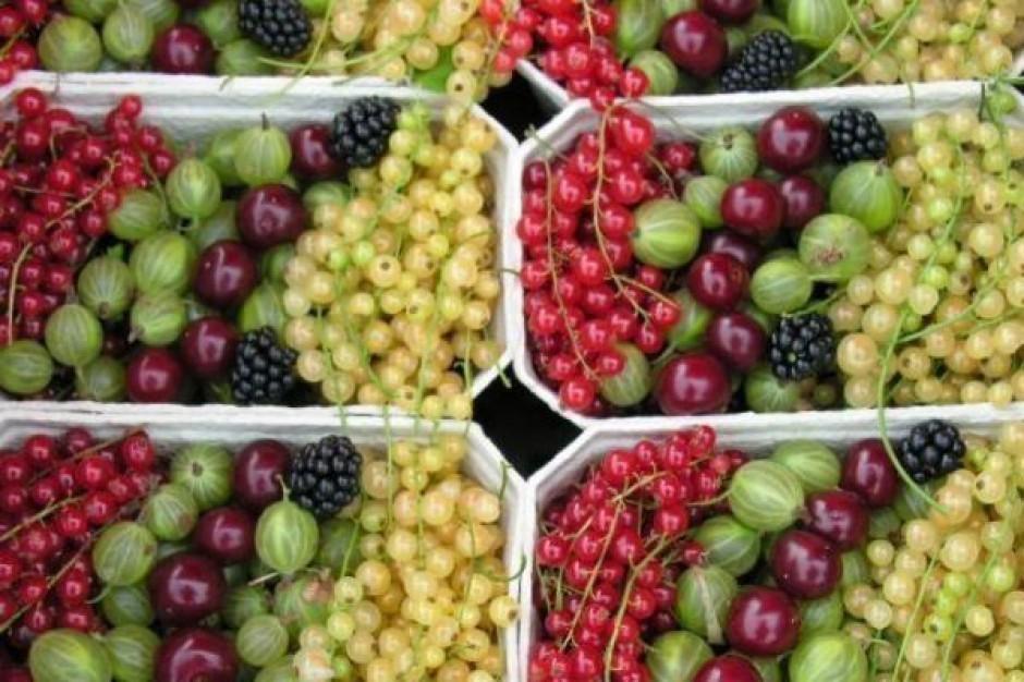 14-proc. wzrost liczby producentów ekologicznych