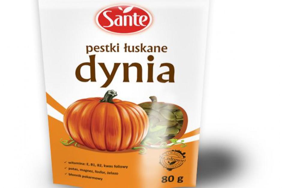 Dynia i słonecznik od Sante