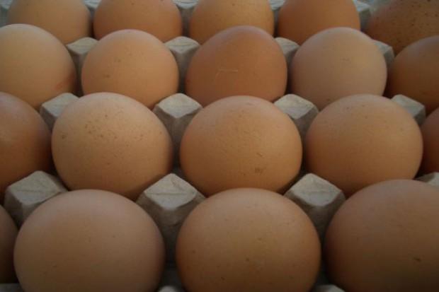 Ceny jaj wciąż rekordowe, ale tanieją jajka przemysłowe