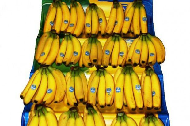 Poradnik: Banany powinny być układane w jednej warstwie, koronkami do góry