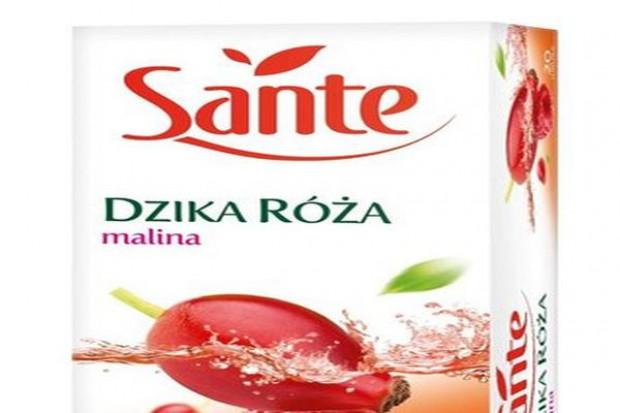 Herbatki owocowe Sante