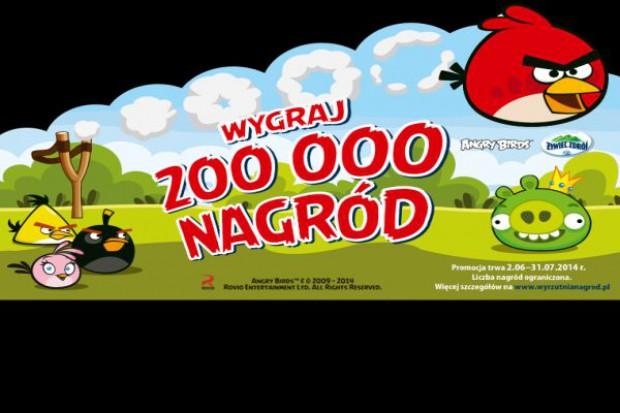 Angry Birds promują Żywiec Zdrój Smako-Łyk
