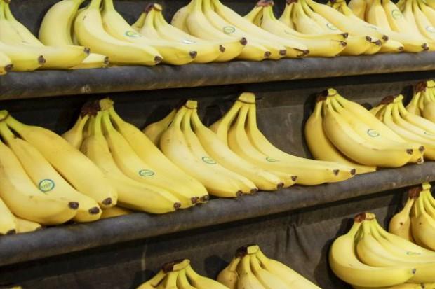 W pudłach z bananami pracownicy hipermarketu znaleźli kokainę