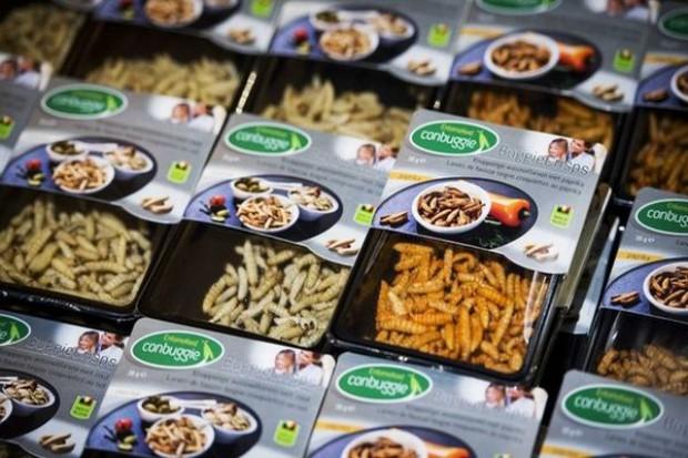 Sieć supermarketów wprowadza owady jako produkty jadalne