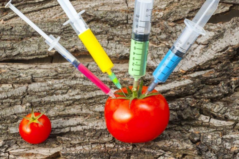 Naukowcy pracują nad żywnością bez kalorii