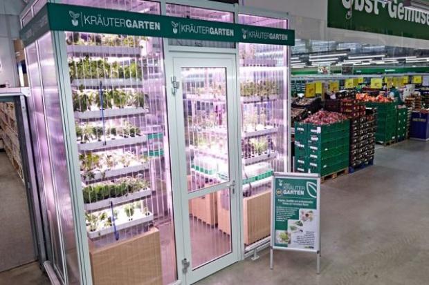 Ogród-szklarnia w sklepie Metro Cash&Carry