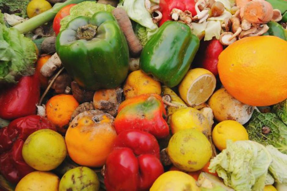 Supermarkety zapłacą 10 groszy za każdy kilogram odpadów żywnościowych?