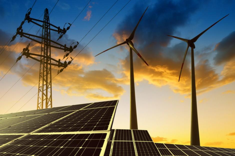 Lidl został dostawcą energii elektrycznej