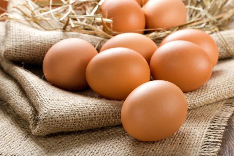 Jaja potencjalnie zanieczyszczone fipronilem trafiły do Polski. GIS uspokaja konsumentów