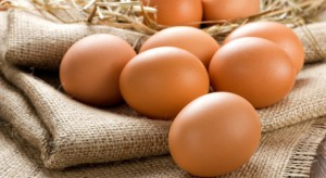 Credit Agricole: Ceny jaj powinny spadać w grudniu