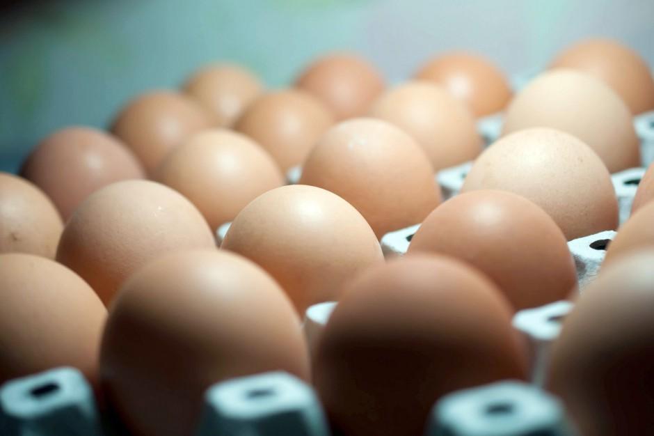 W 2017 r. kilkanaście sieci zrezygnowało ze sprzedaży jaj z chowu klatkowego