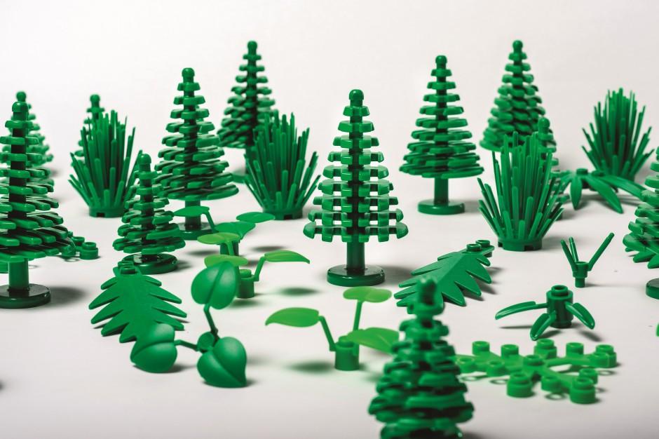 Lego będzie produkować klocki z trzciny cukrowej