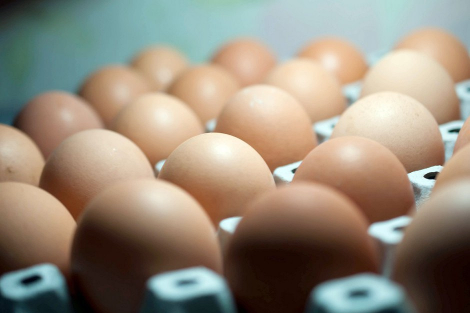 9 na 10 jaj sprzedawanych w Polsce pochodzi z chowu klatkowego