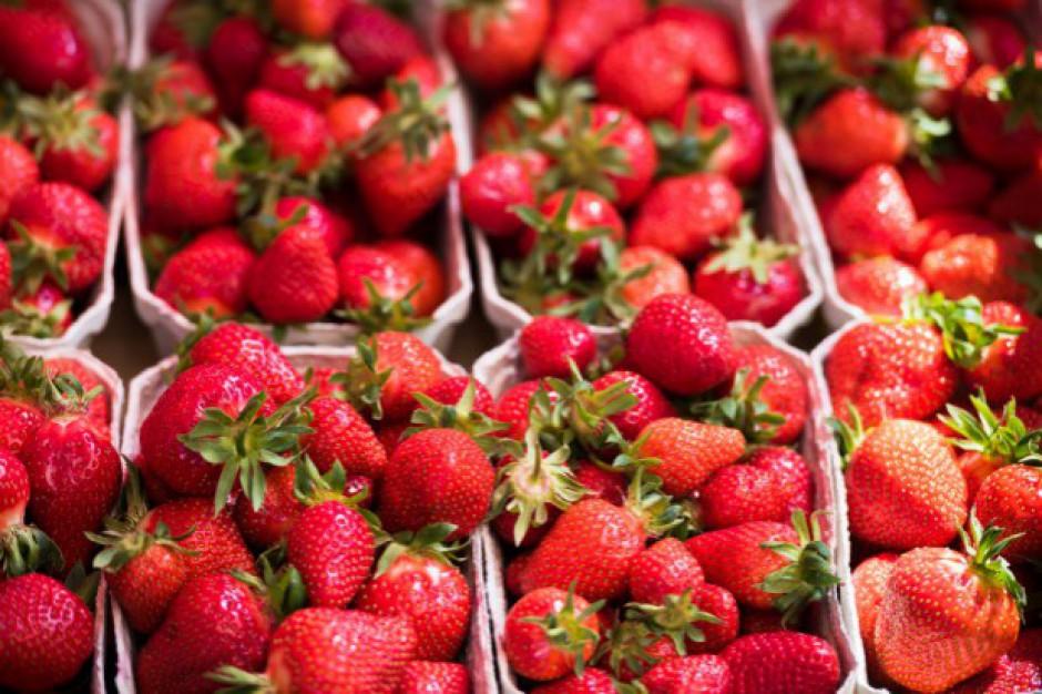 Media prowadzą kampanię przeciwko polskim producentom truskawek?