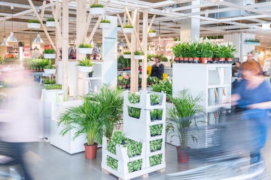 """W Niemczech działa """"ekologiczny"""" sklep IKEA"""
