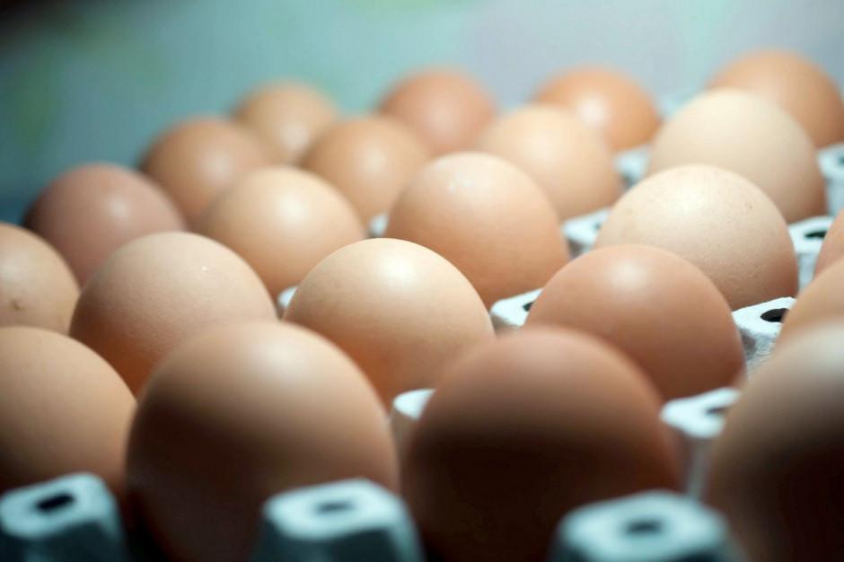 Rezygnacja z jaj z chowu klatkowego przełoży się na wzrost cen