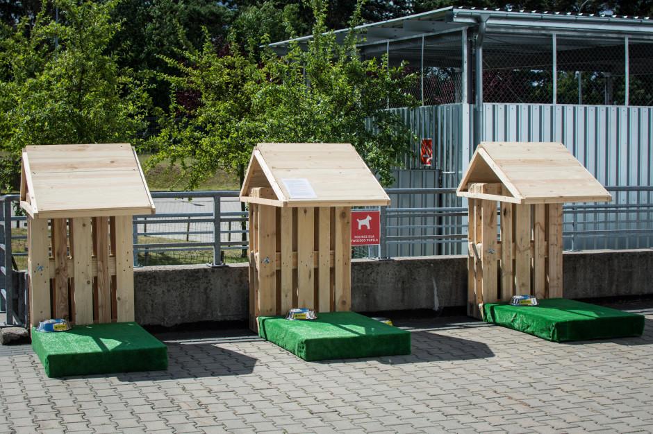 W PH Matarnia pojawiły się parkingi dla psów