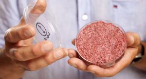 Mięso z probówki może trafić do sprzedaży już w 2021 roku