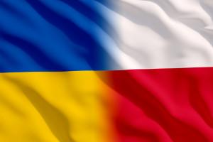 Badanie: Ukraińcy mieszkający w Polsce wydają na żywność ok. 473 zł miesięcznie