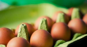 Badanie: Polacy są w stanie więcej zapłacić za produkt lepszej jakości, produkowany ekologicznie