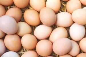 KIPDiP: Marże na jajach M i S są coraz niższe