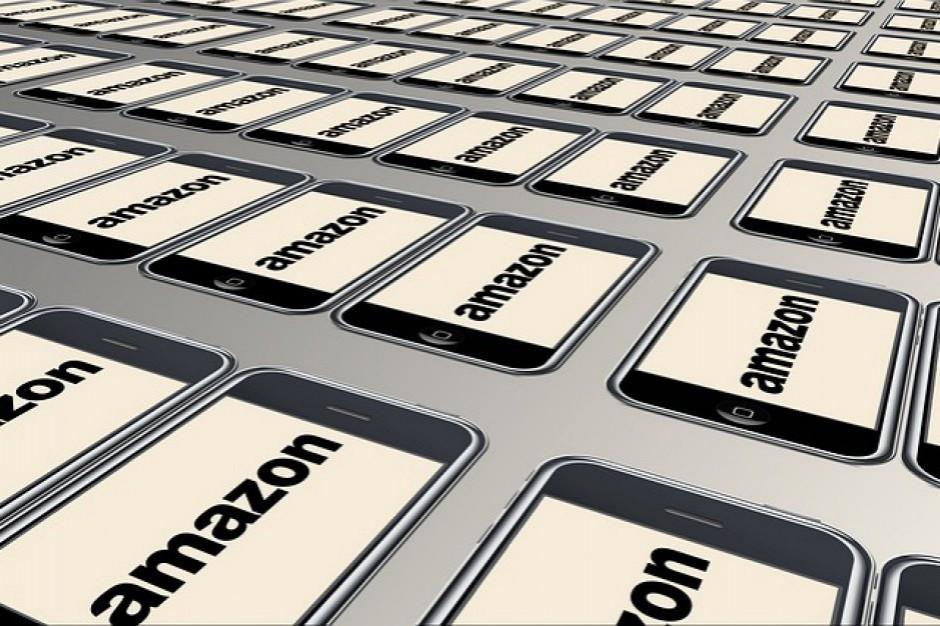 Wyroki w zawieszeniu dla okradających magazyn Amazona