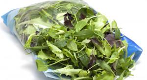Naukowcy zbadali sałaty w opakowaniach. Wszystkie zawierały bakterie