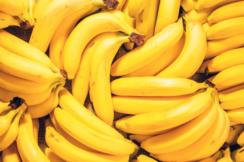 Narkotyki w bananach, które trafiły do sklepów sieci Stokrotka