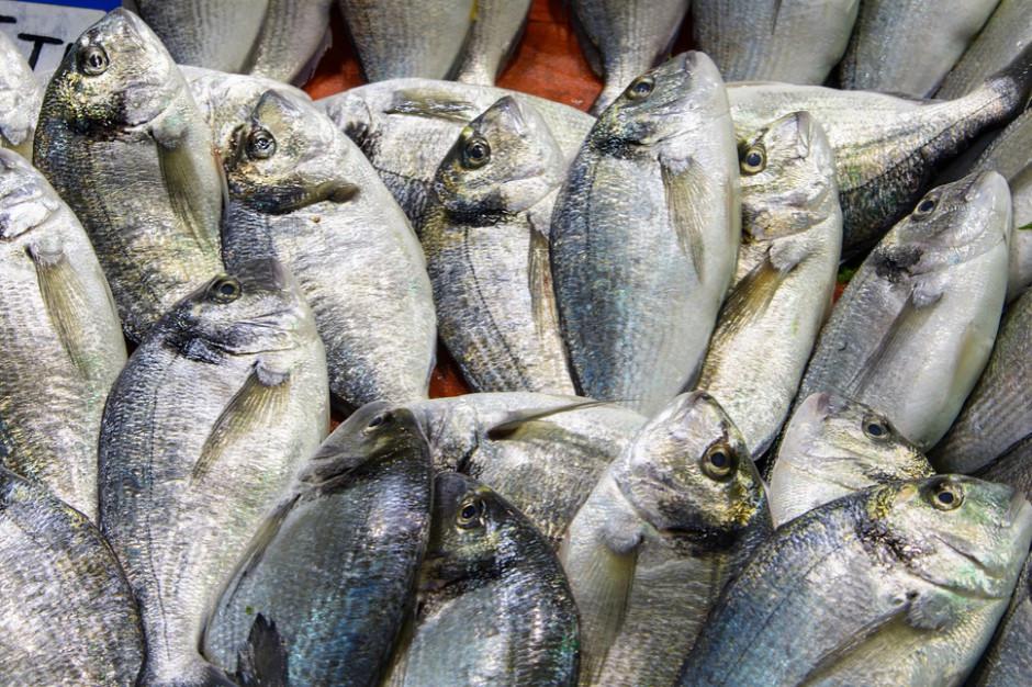 Bisnode: Liczba sklepów rybnych w trzy lata skurczyła się o 11 proc.