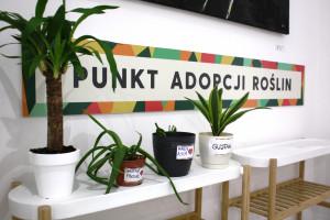 W Galerii Łomianki ruszył punkt adopcji roślin