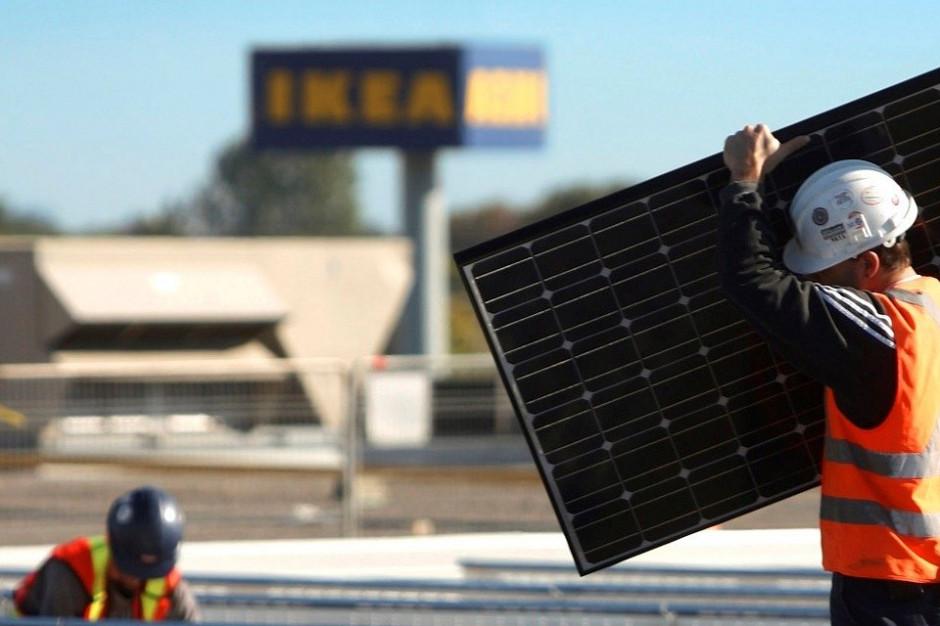60 proc. asortymentu IKEA pochodzi z materiałów odnawialnych
