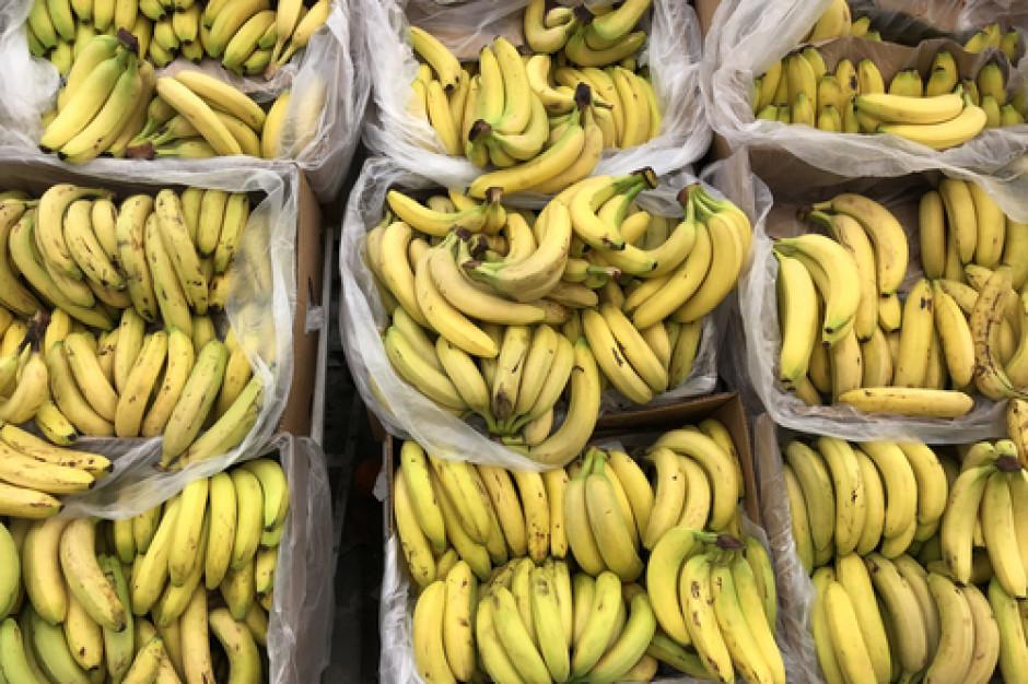Kokaina warta 25 mln euro w bananach jadących do Aldi