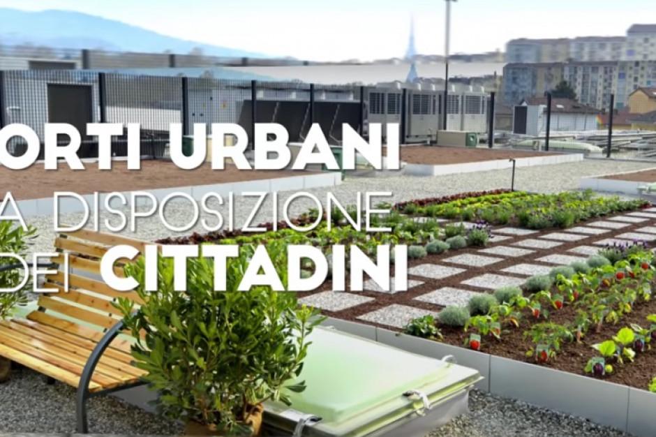 Lidl otworzył w Turynie sklep połączony z miejskim ogrodem