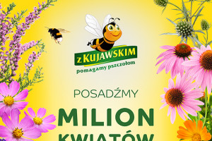 Marka Kujawski pomaga pszczołom