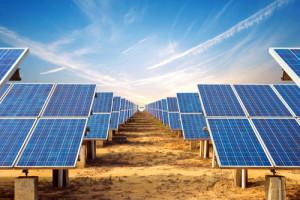 Zielona energia zasili sklepy z Grupy Maxima