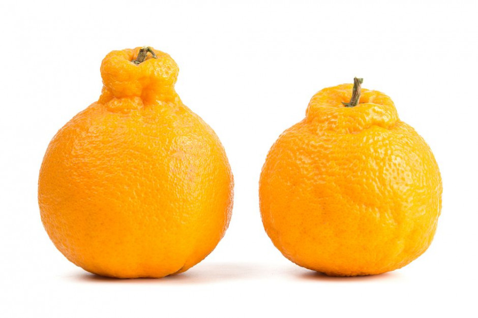 """Handel """"brzydkimi owocami"""" sposobem na marnotrawstwo"""
