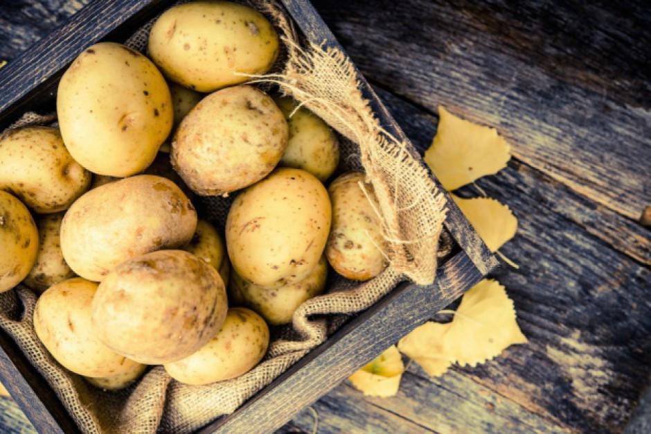 Koszyk cen:  Ziemniaki w sklepach osiedlowych rekordowo drogie