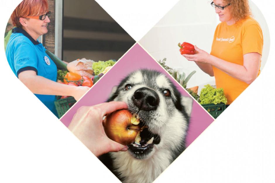 Tesco oddaje żywność organizacjom, które zajmują się zwierzętami