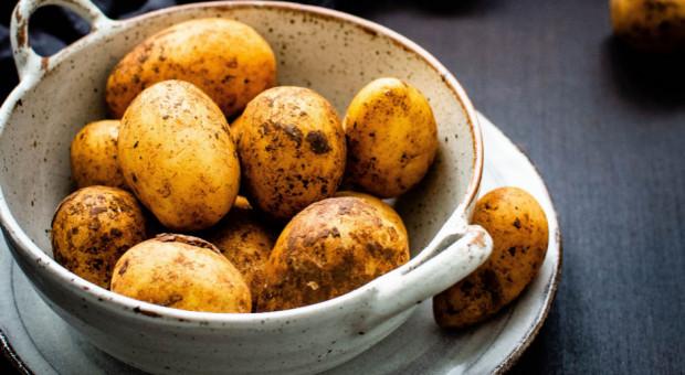 Ziemniaki zdrożały o 132 proc., a cebula o 96 proc.