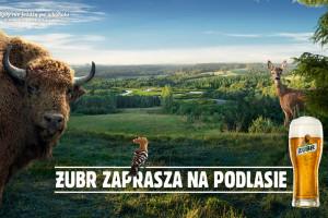 Trwa nowa kampania marki Żubr